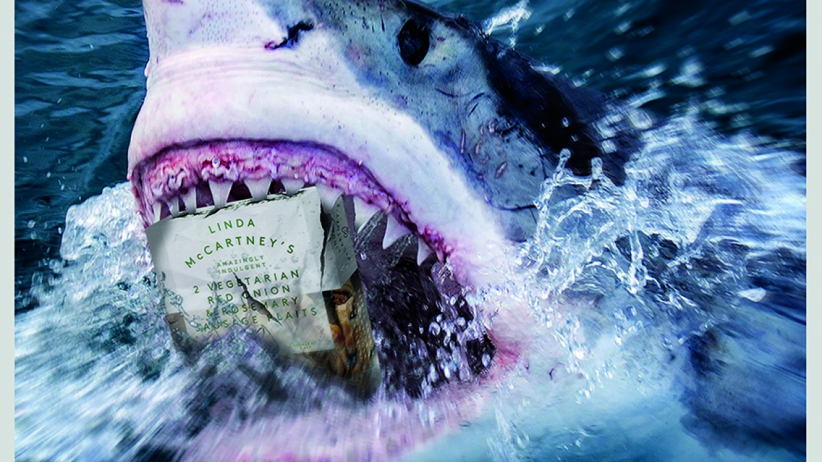 Shark breaks through the surface of the water with a box of Linda McCartney's sausages in it's mouth.