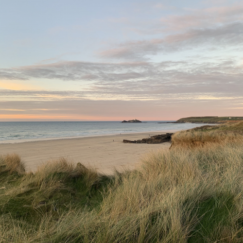 Godrevy beach with grass in the foreground and the sun setting in the background