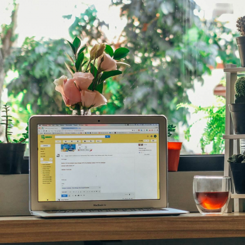 An open laptop on a table with a glass and plants posited behind