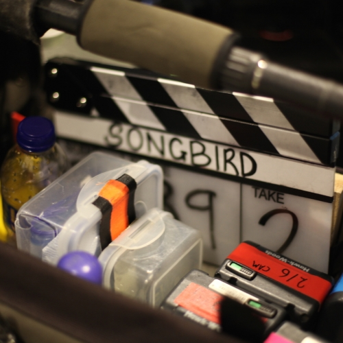 Close up of filming equipment, clapperboard with the word Songbird on it.