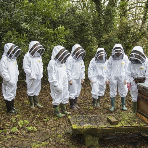 Group of students wearing bee keeping suits stood next to hive.