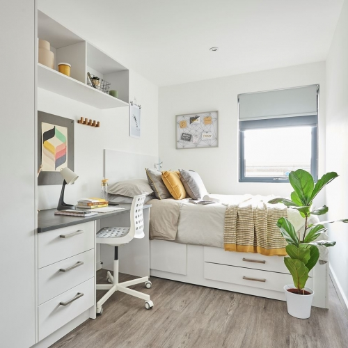 Bedroom interior with bed, desk, plant and wardrobe
