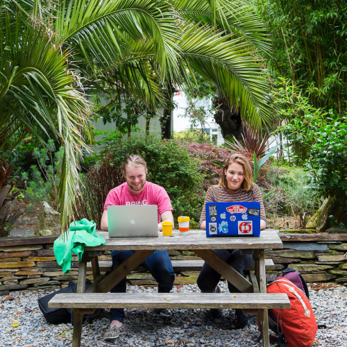 Students working at laptops below palm tree on Falmouth campus.