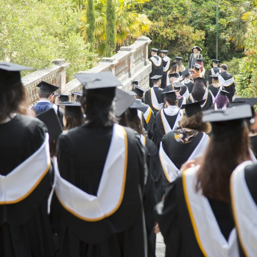 Procession of Falmouth University graduands walking through the gardens in gowns and caps