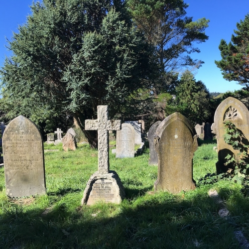 Grave stones and bushes