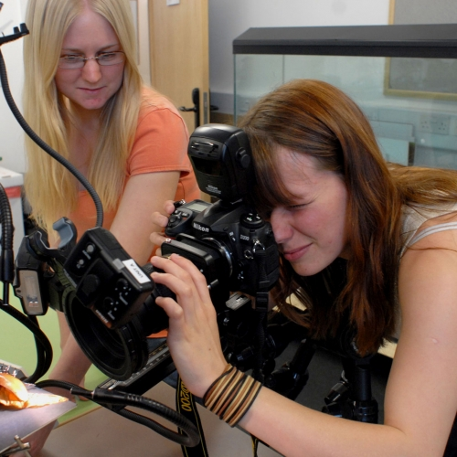 Students photographing an orange creature close up in studio set up.