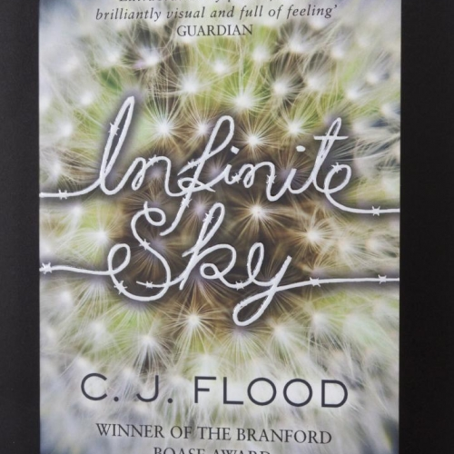 Book cover of a close up dandelion clock and title Infinite Sky.