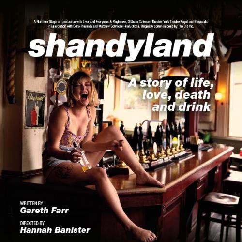 Shandyland poster image