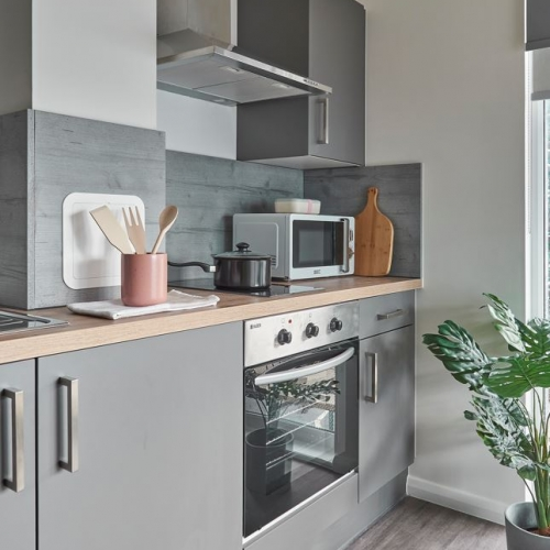 Kitchen interior with grey cupboards, oven and microwave