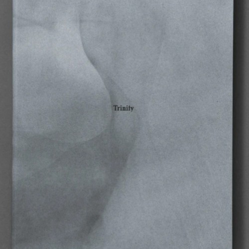 Cover of Trinity photo book - a matted grey background with the title centred in black