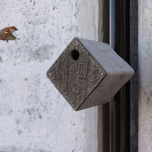 Bird flying towards contemporary cube shaped bird box.