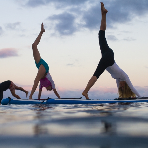 Group of paddle boarders doing yoga on boards.