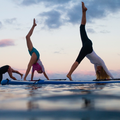 Group doing yoga poses on stand up paddle boards on the sea.